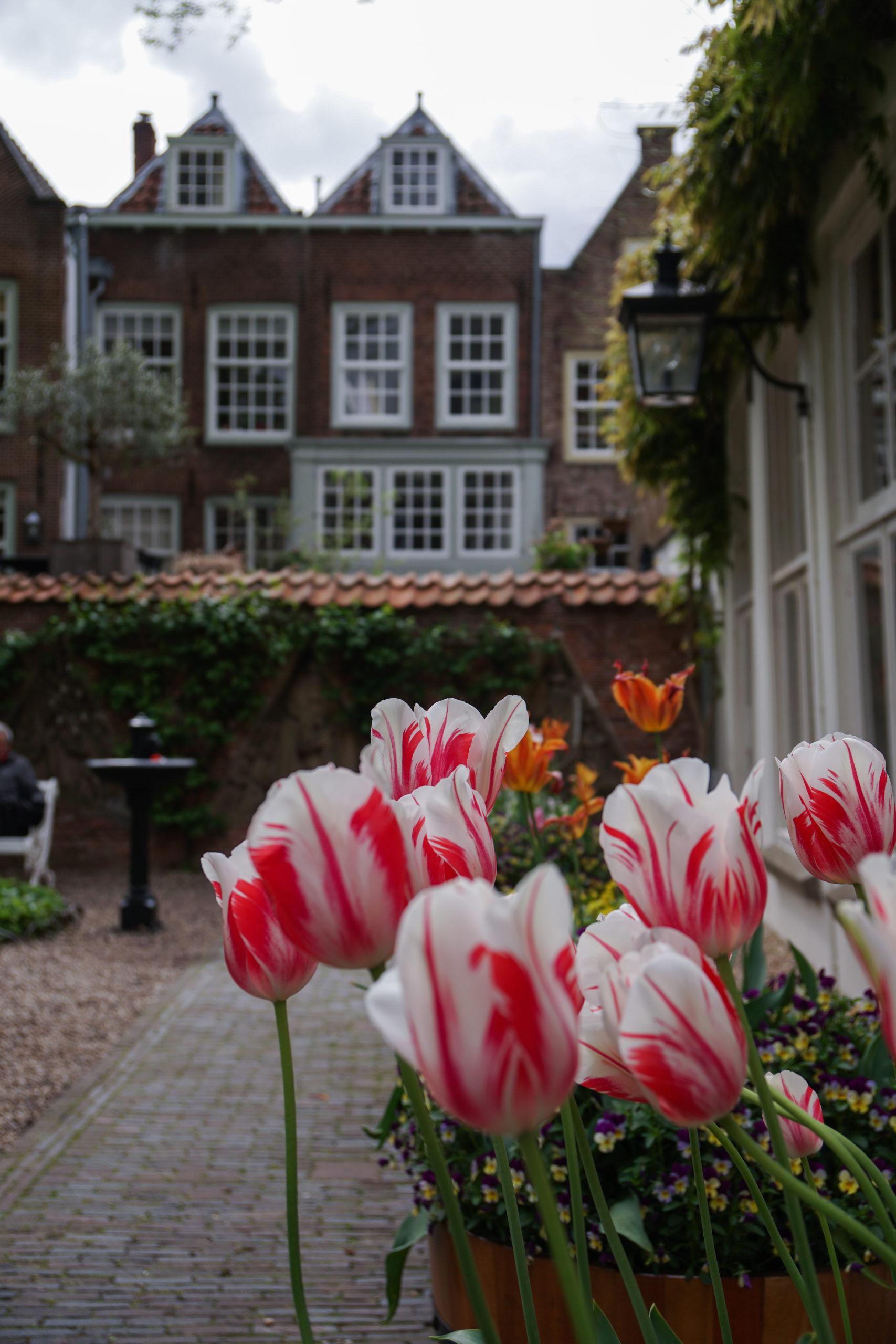 Utrecht Tipps: Ein Tagesausflug in die Nachbarstadt von Amsterdam