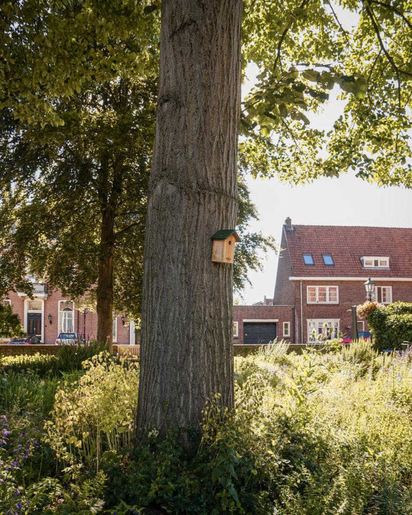 Hollandurlaub: Die Hansestädte der Niederlande